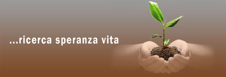 Banner Sla2